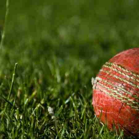 Best IPL Betting Strategy: Tips to Win big!